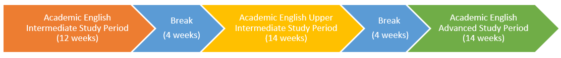 Academic English Intermediate-1